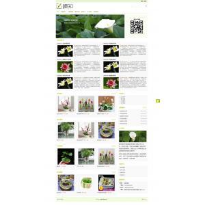 花卉盆栽销售网站模板