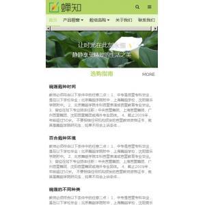 花卉盆栽销售网站移动端模板