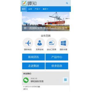 外贸企业网站移动端模板